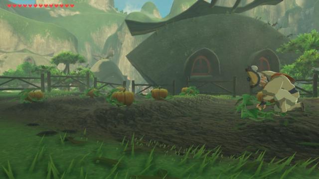 File:Breath of the Wild Shops Olkin's Pumpkins (Kakariko Village).png
