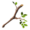 File:Breath of the Wild Improvised Weapons (Wood) Tree Branch (Icon).png
