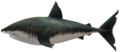 Majora's Mask 3D Boss Fish Savage Shark (Ocean Fishing Hole).png