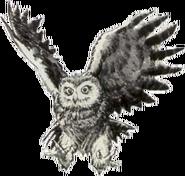 Owl Artwork 1 (Link's Awakening)