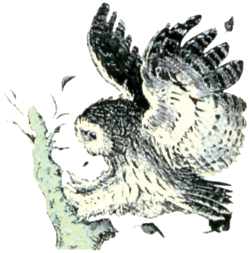 File:Owl Artwork 3 (Link's Awakening).png
