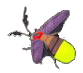 File:Sunset firefly.png