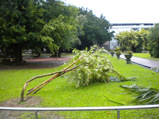 檔案:凡那比颱風的摧殘-南台科技大學8.jpg
