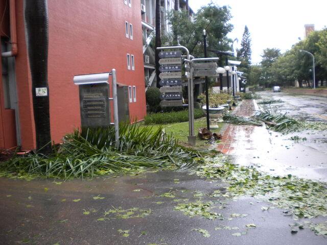 檔案:凡那比颱風的摧殘-南台科技大學3.jpg