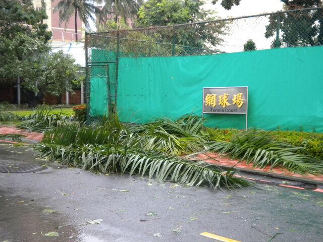 檔案:凡那比颱風的摧殘-南台科技大學10.jpg