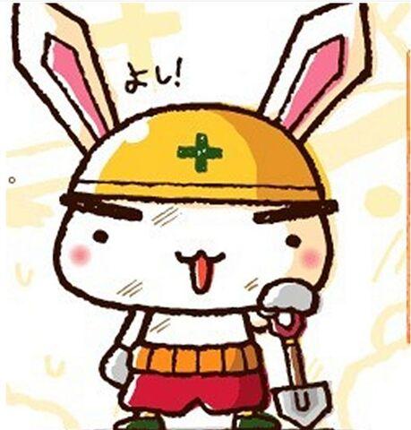 File:见习兔.jpg