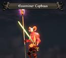 Examiner Cepheus