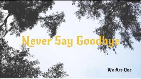 Never Say Goodbye ~ We Are One