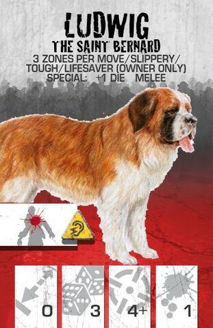 File:Dog Companion Saint Bernard.jpg