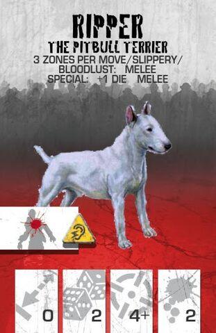 File:Dog Companion Pitbull.jpg