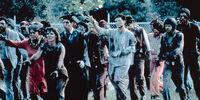 Romero zombies