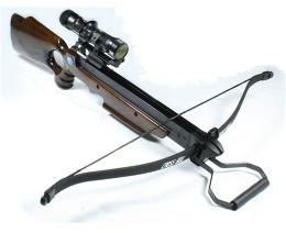 File:Modern Recurve Crossbow.jpg