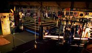 Boxing gym.jpg.728x520 q85