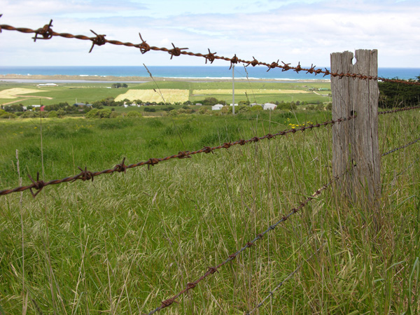 File:Barb-Wire-Fence.jpg