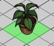 File:Philodendron hederaceum.png