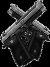 Zewikia weapon pistol elite css