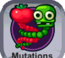 Mutation Collection