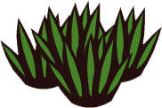 File:Grass Patch.png