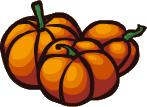 Street Pumpkin00