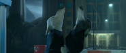 Larry and Gary Howling