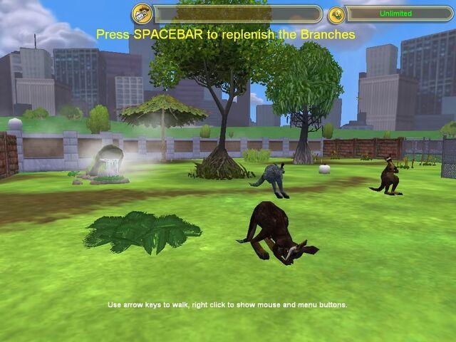 File:Swamp Wallaby.jpg