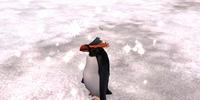 Killer Penguin