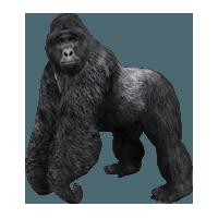 Mountain Gorilla (Aurora Designs) 1