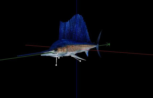 File:Sailfish Mesh.jpg