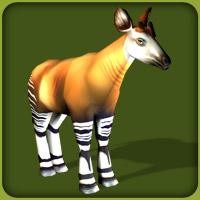 File:Okapi Adult F.jpg