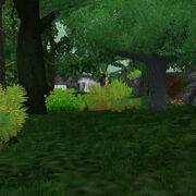 Preview tropicalrainforest