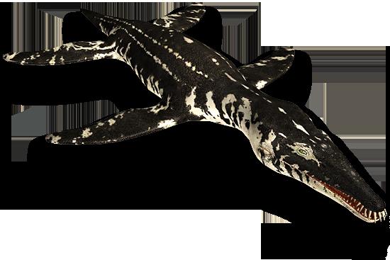 File:Liopleurodon.png