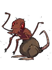 File:58-rat-ant.png