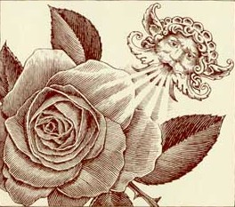 File:Compass rose.jpg