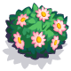 Pink Flower Bush-icon.png