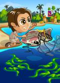 Dolphin Days-icon