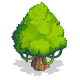 Jungle Tree-icon.png