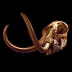 Fossils Mastodon-icon