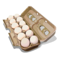 PettyPranks Eggs-icon