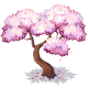 Sakura-icon