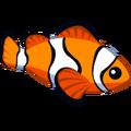 ColorfulFish Clown Fish-icon.png