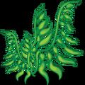 SeaPlants Seaweed-icon