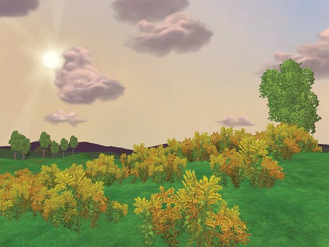 Bg grassland4