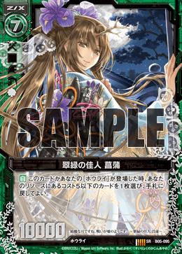 B05-095 Sample