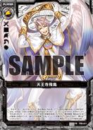 P09-011 Sample