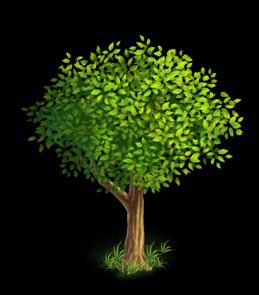 File:Oak Tree 2.png